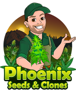 marijuana seeds phoenix logo